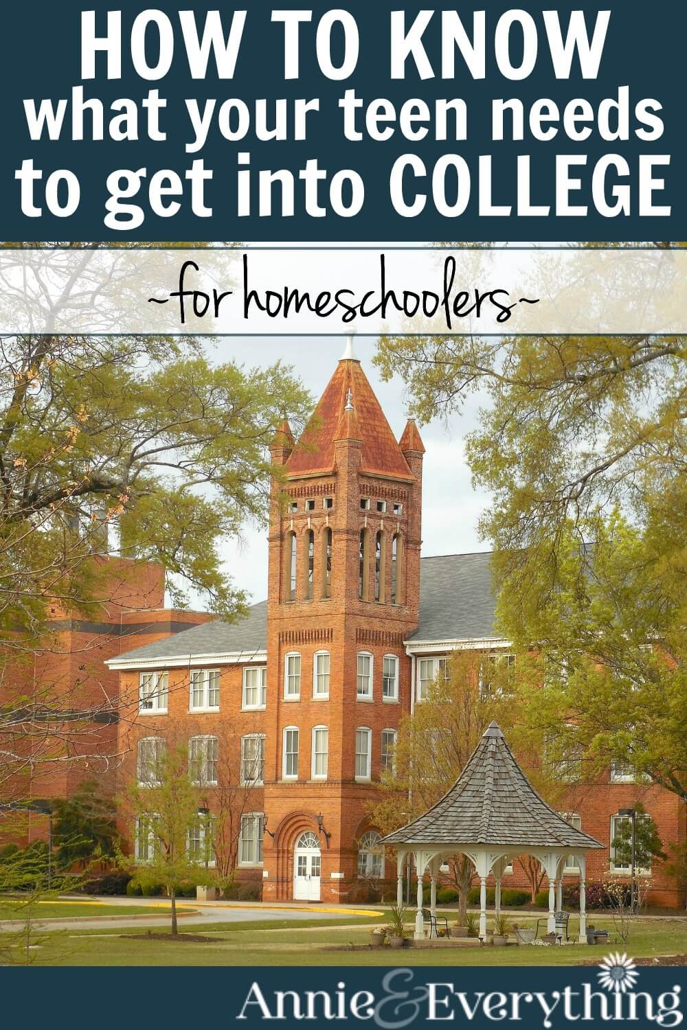 Everyone should do this simple thing to know what it takes for a homeschooled teen to get into college. It's not as hard as you think! Ease your fears about homeschooling high school now!