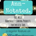 Ann-Notated: Homemade Cleaning Products for Specific Jobs
