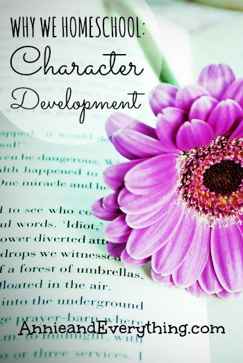 Why homeschool? For us it was NOT about academics but about character development -- read this to understand more.