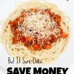 I Hate Meal Planning!  But It Sure Does Save Money