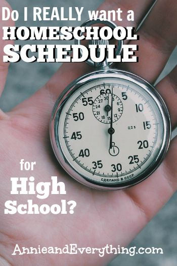 Planning your homeschool schedule? Here's what we've decided to do for high school this year!