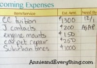 What to do with expenses that are not part of your regular budget plan? I've got a free printable to help you organize them on an as-needed basis!
