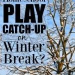 Does Your Homeschool Play Catch-up over Winter Break?