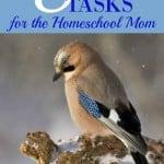 8 Winter Break Tasks for the Homeschool Mom