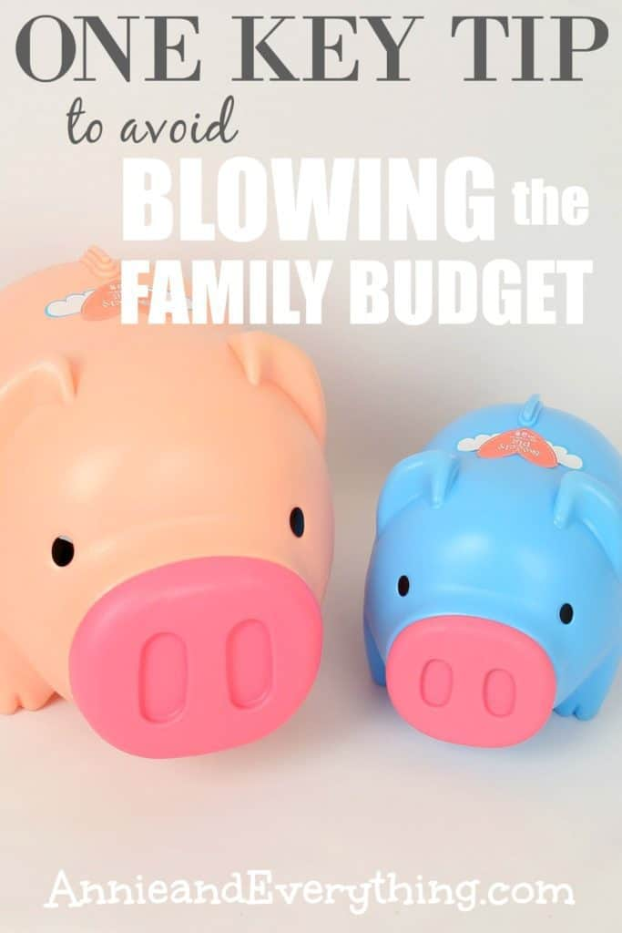 Do you find yourself blowing the family budget every month? Setting up sinking funds can help! You can get control of your finances TODAY!