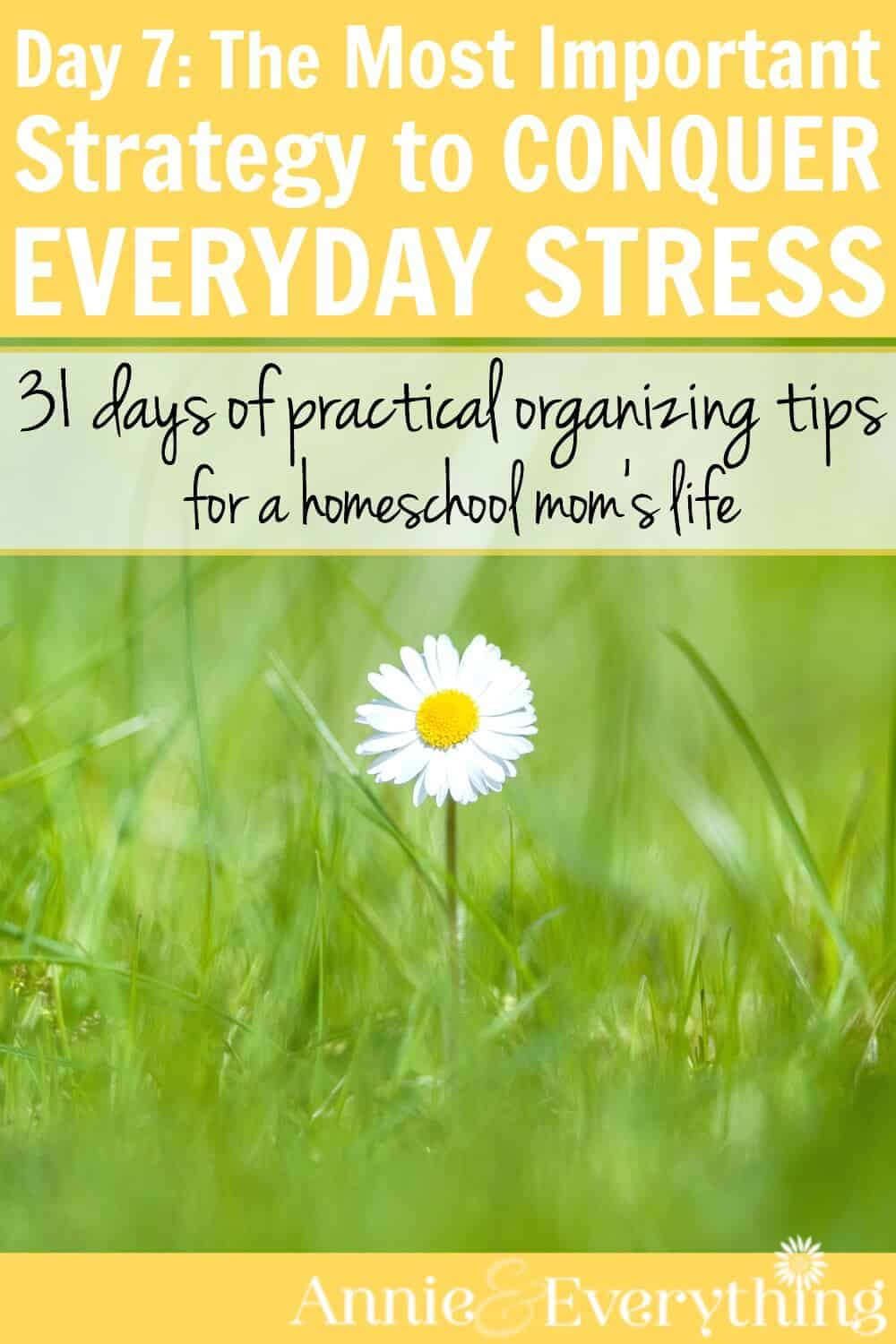 How to destress your life. Stress and anxiety management. This is one of the best tips for stress relief out of all the ways I've tried. Reduce everyday stress with this simple life hack!
