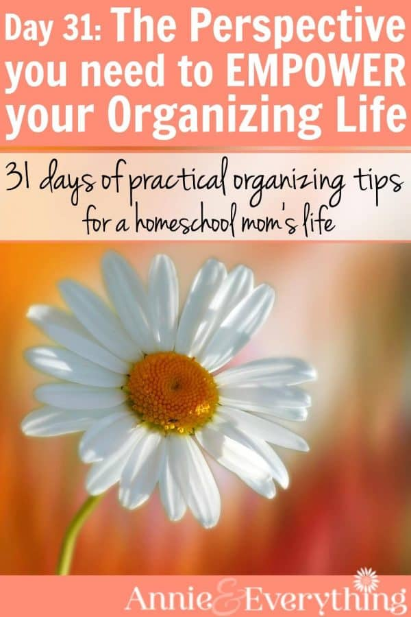 When you are trying to meet an organization goal but feel like you are falling short, this tip should help. Boost your motivation and get ready to enjoy your organized life! Part of a series for homeschool moms.