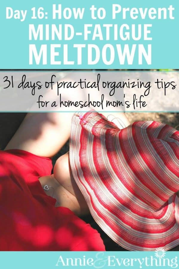 The mommy meltdown is a real thing. Read about one of the most effective ideas to prevent meltdown by applying a small change to your decision making process. Part of a series of organizing tips for the homeschool mom -- check it out!