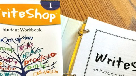 The WriteShop curriculum gives the homeschool mom the nuts and bolts she needs to feel confident about teaching high school writing. I've tried several homeschool writing programs, and this is the best I've seen! Everything is spelled out so both you and your student can enjoy the writing process.